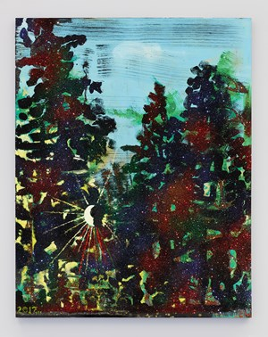 Catskill Sunset by Chris Martin contemporary artwork