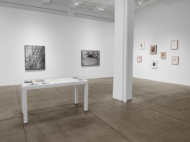 Exhibition view: Ana Mendieta, La tierra habla (The Earth Speaks), Galerie Lelong & Co., New York (17 October–16 November 2019).  © The Estate of Ana Mendieta Collection, LLC. Courtesy Galerie Lelong & Co., New York. Photo: Licensed by Artists Rights Society (ARS), New York.