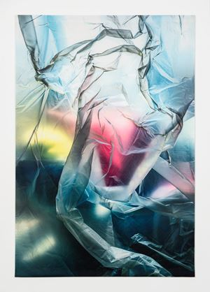 Untitled (3327) by Elisa Sighicelli contemporary artwork