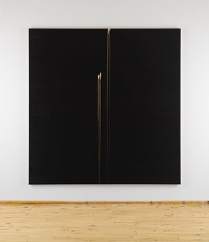 Two Identified Forms by Callum Innes contemporary artwork