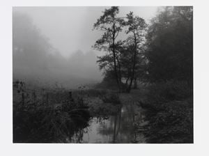 The River Alham that runs through my village in Somerset by Don McCullin contemporary artwork photography