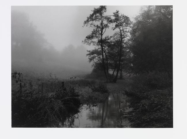 The River Alham that runs through my village in Somerset by Don McCullin contemporary artwork