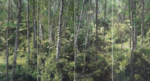 Study of Green-White Birch 2 by Honggoo Kang contemporary artwork