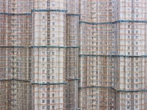 East Island Cocoon, Hong Kong by Peter Steinhauer contemporary artwork