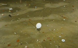 River, balloon - drifting by Andrew Browne contemporary artwork