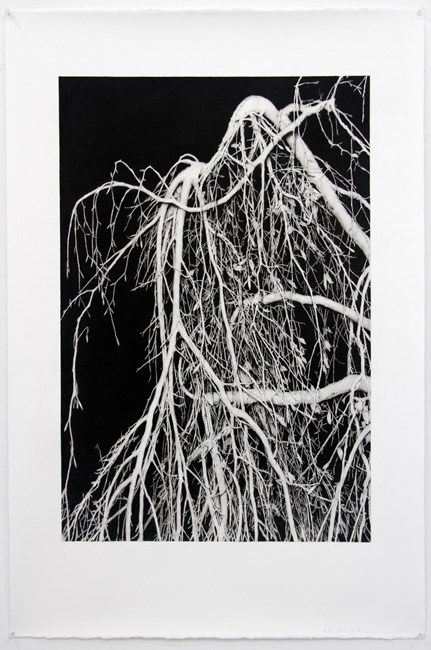 #34 by Andrew Browne contemporary artwork