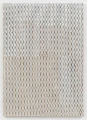 Beige Net by Sergej Jensen contemporary artwork