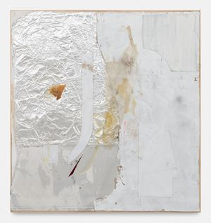 Reconstructions / Kryptomorphism by Rudolf Polanszky contemporary artwork