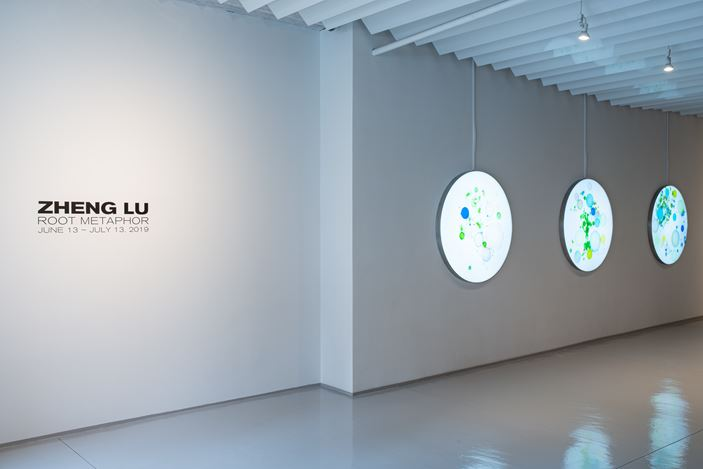 Exhibition view: Zheng Lu, Root Metaphor, Sundaram Tagore Gallery, Chelsea, New York (13 June–13 July 2019). Courtesy Sundaram Tagore Gallery.