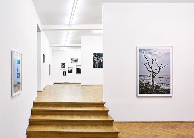 Exhibition view: Flo Maak, Collected Stories, Bernhard Knaus Fine Art, Frankfurt (5 February–30 April 2021). Courtesy Bernhard Knaus Fine Art.