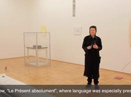 Galerie nächst St. Stephan | Joëlle Tuerlinckx on her exhibition Les Salons Paléolithiques
