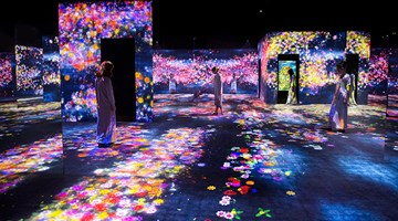 Contemporary art exhibition, teamLab, Living Digital Forest and Future Park at Pace Gallery, Beijing