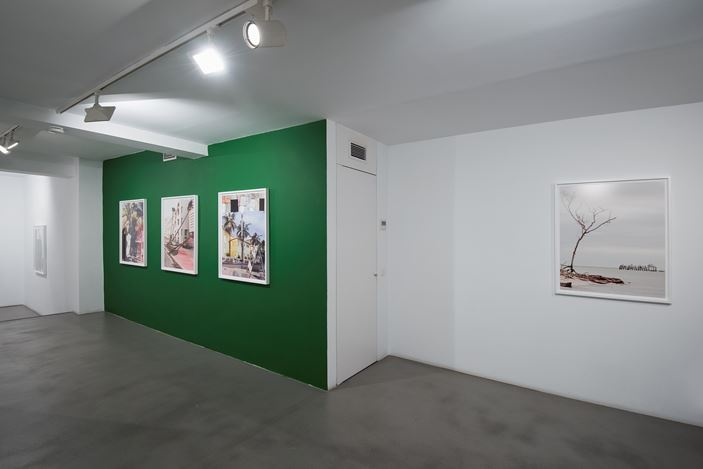 Exhibition view: Anastasia Samoylova, FloodZone, Sabrina Amrani, Madera, 23, Madrid (3 February–3 April 2021). Courtesy Sabrina Amrani.