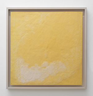 Interiors (Salty) [No. 3] by Nina Canell contemporary artwork
