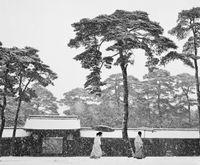 Meiji Schrein, Tokio, Japan, 1951 by Werner Bischof contemporary artwork photography