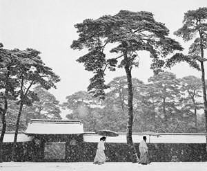Meiji Schrein, Tokio, Japan, 1951 by Werner Bischof contemporary artwork