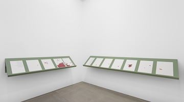Contemporary art exhibition, Lawrence Abu Hamdan, Lawrence Abu Hamdan at Maureen Paley, London