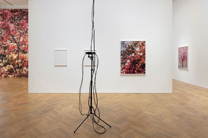 Exhibition view: Trevor Paglen, Bloom, Pace Gallery,London (10 September–10 November 2020).© Trevor Paglen. Courtesythe artist and Pace Gallery. Photo: Damian Griffiths.