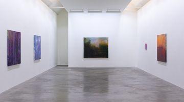 Contemporary art exhibition, Elizabeth Magill, Red Stars and Variations at Kerlin Gallery, Dublin, Ireland