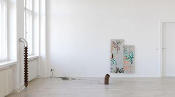 Contemporary art exhibition, Nina Canell, Dits Dahs at Barbara Wien, Berlin, Germany