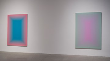 Contemporary art exhibition, Wang Guangle, Duo Color at Pace Gallery, 510 West 25th Street, New York, USA