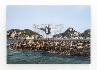 GIANTS, Cleuson LIMA DO ROSARIO from Brazil, Barra da Tijuca, from the beach, © Comité international Olympique, Rio de Janeiro, Brazil by JR contemporary artwork photography