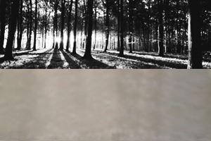 Untitled by Rudi Mantofani contemporary artwork