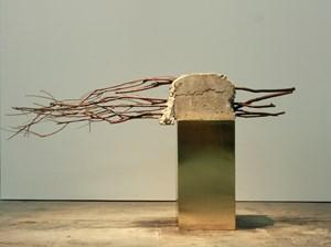 Concrete Burden 2 by Vibha Galhotra contemporary artwork