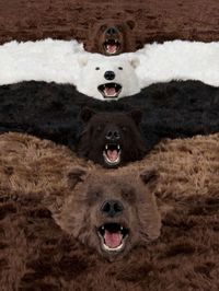 I'm a bear, so what? by Paola Pivi contemporary artwork photography