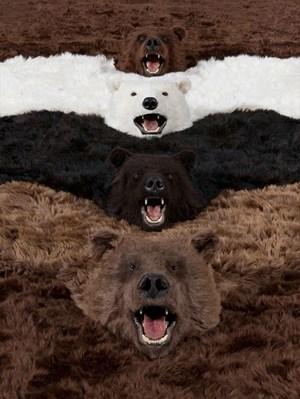 I'm a bear, so what? by Paola Pivi contemporary artwork