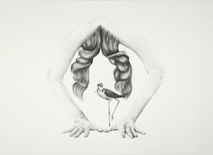 Guarded entrance by Patricia Piccinini contemporary artwork drawing