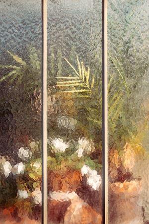 Arecaceae Palmae by Samuel Zeller contemporary artwork