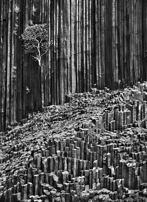 Basaltic organ pipes on Mitsio Island, Madagascar by Sebastião Salgado contemporary artwork
