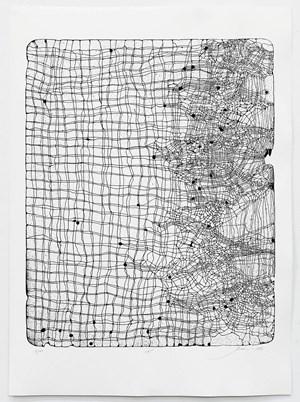 Net by Julia Morison contemporary artwork