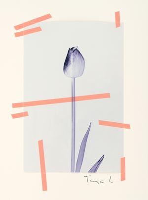 #94 by Tanja Lažetić contemporary artwork