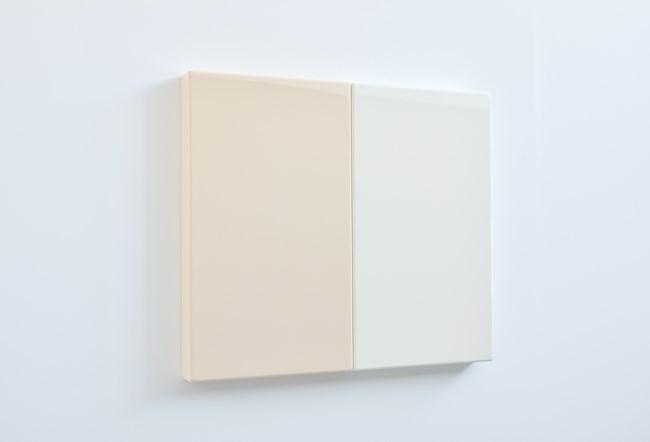 Flesh White by Suzie Idiens contemporary artwork