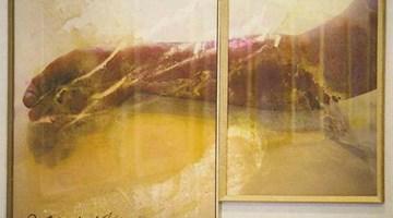 Contemporary art exhibition, Ben Webb, Afterlife at Jonathan Smart Gallery, Christchurch