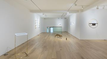 Contemporary art exhibition, Gabriel Rico, The Stone, The Branch and The Golden Geometry at Perrotin, Seoul