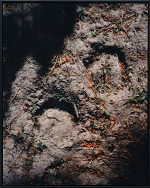 A horse ride to Chaney's Forest (Described by Itan Jimenez-Nava) by Conor Clarke contemporary artwork