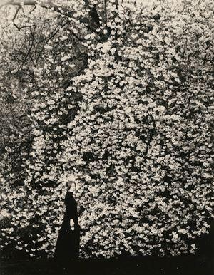 #1641, Kawa = Flow by Yamamoto Masao contemporary artwork