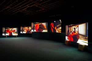 Lina Bo Bardi - A Marvellous Entanglement by Isaac Julien contemporary artwork