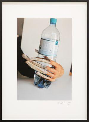 Das Meer by Lois Weinberger contemporary artwork