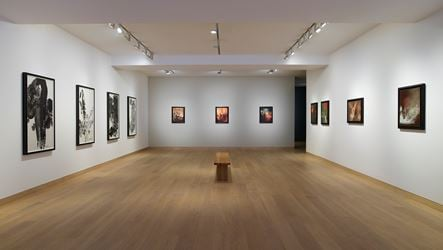Exhibition view: Chu Teh-Chun,Nature Lives With Me, Waddington Custot, London (19 September–4 November 2017). Courtesy Waddington Custot, London.