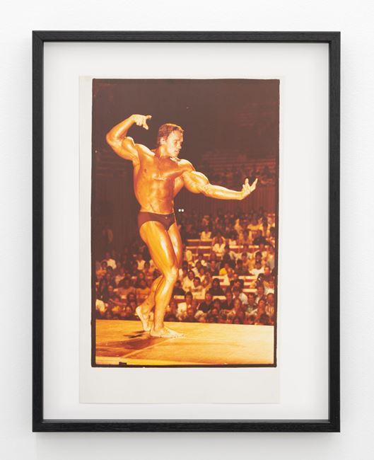 Arnold Schwarzenegger, Mr Olympia 1980, Sydney by Fiona Clark contemporary artwork