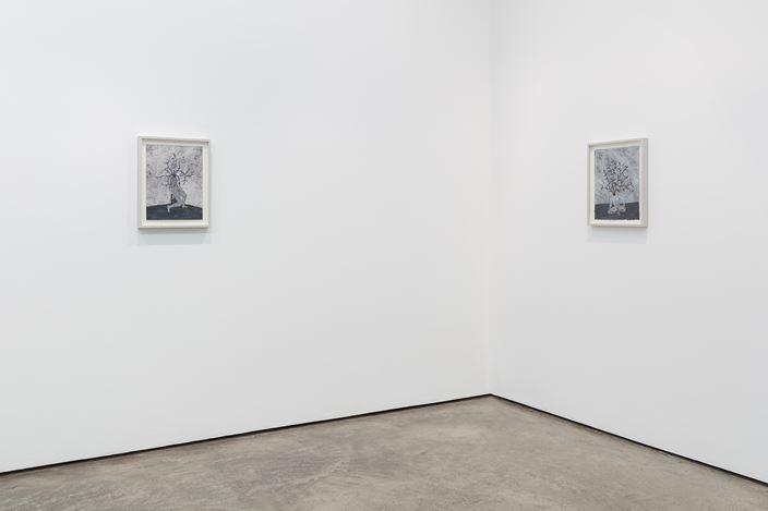 Exhibition view: Felipe Baeza, Maureen Paley, London (15 November 2018–6 January 2019). © Felipe Baeza. Courtesy Maureen Paley, London.