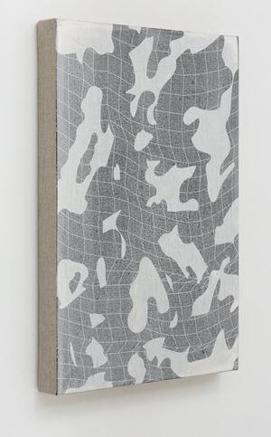 Edge Control #42, Second Nature by Genevieve Chua contemporary artwork