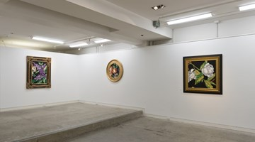 Contemporary art exhibition, Reuben Paterson, The Aroma of Black (Part II) at Page Galleries, Wellington, New Zealand