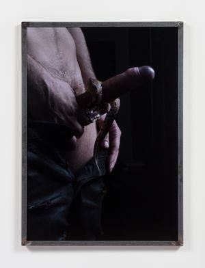 Dick and Snake by Heji Shin contemporary artwork