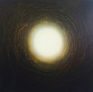 Phenomena by Andrew Browne contemporary artwork