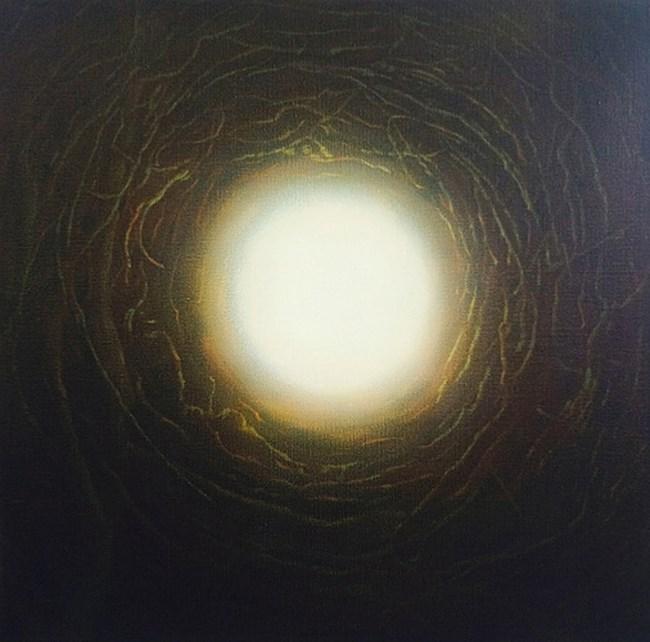 Phenomena by Andrew Browne contemporary artwork
